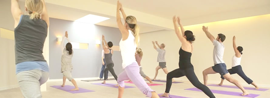 Corporate Yoga Classes for your Wellness Program